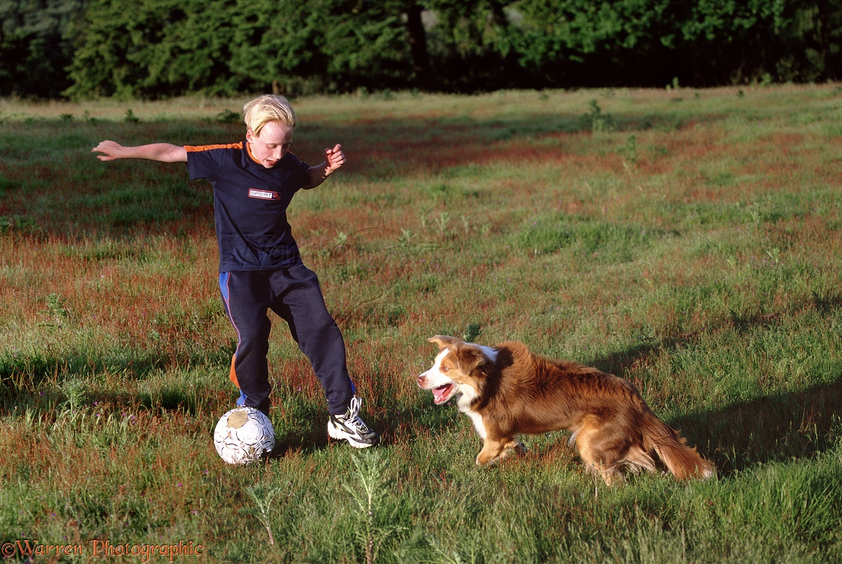 us map for children with 00800 Boy Playing Football With Border Collie on nikoi likewise 00800 Boy Playing Football With Border Collie also Nutrition2 together with 39739 Girl Playing With Mongrel Dog in addition Fifties.