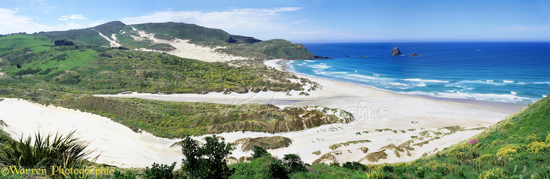 New Zealand Panoramic Views