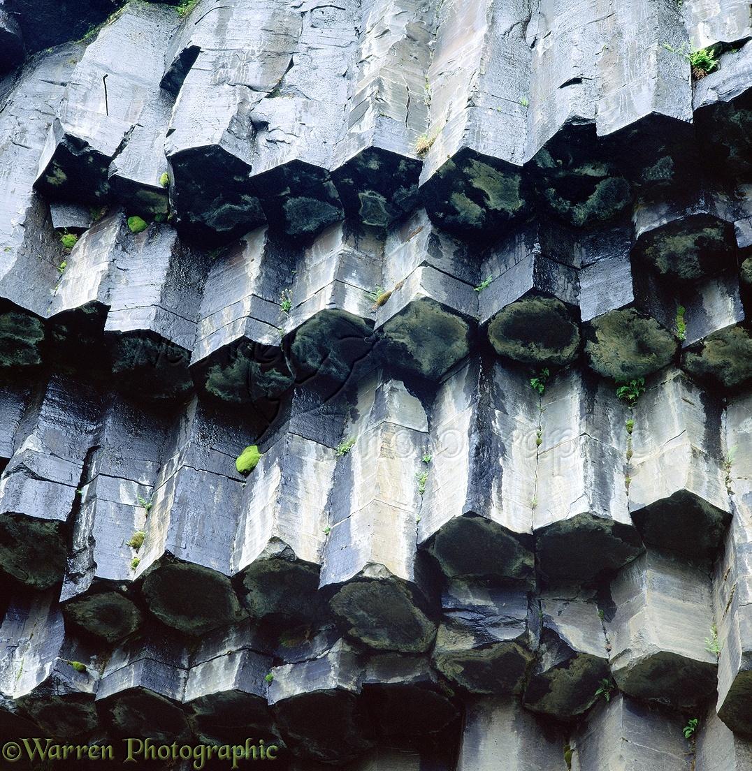 Basalt Columns In Iceland Photo Wp01822