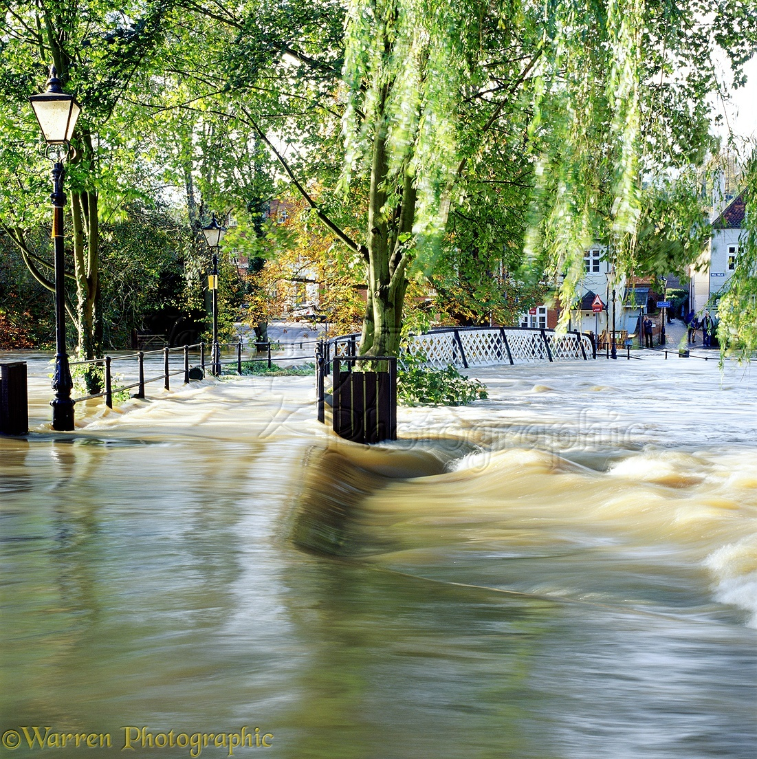 Flooding in Guildford photo WP02557