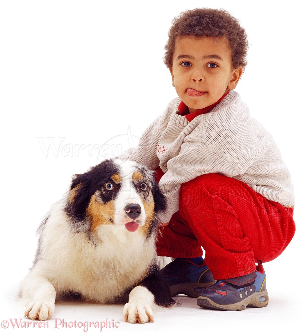WP03097 Afro-Caribbean boy, Jumaane , and Border Collie, both with