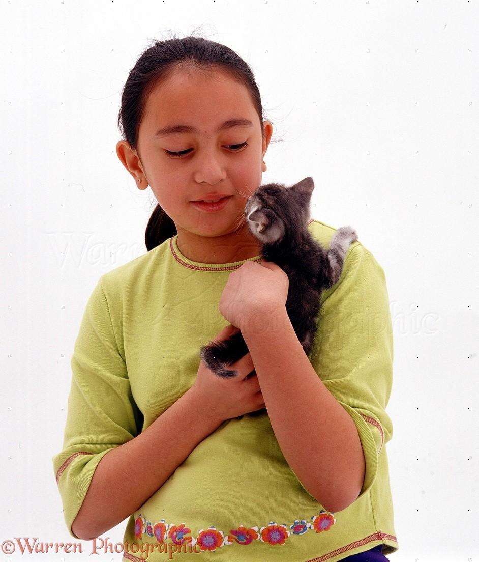 WP09752 Melissa holding a tabby kitten.
