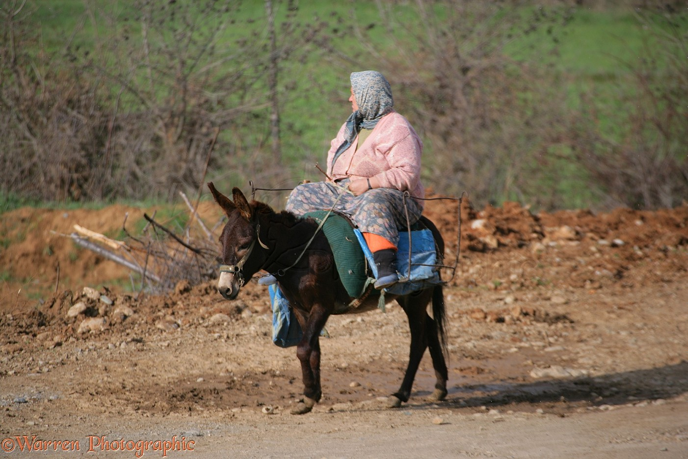 WP12158 Woman on a donkey. Cicekpinar, Turkey.