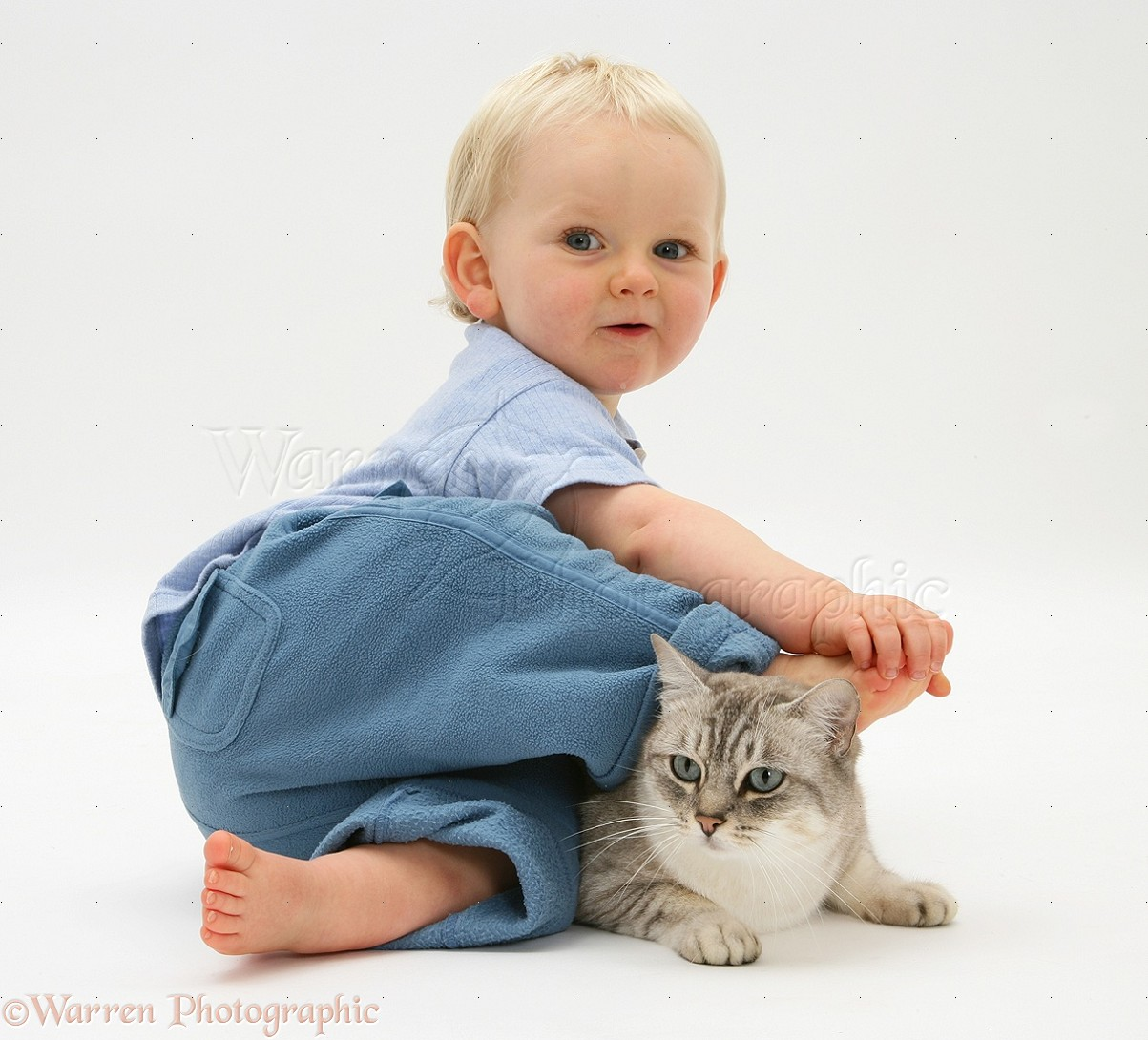 Http Www Warrenphotographic Co Uk 12718 Toddler With Bengal Cat