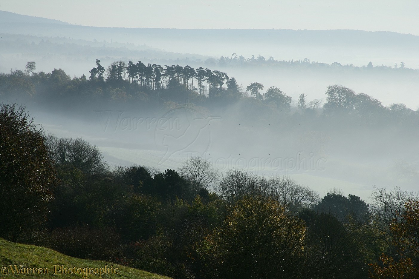 Early december morning in the heart of the surrey hills