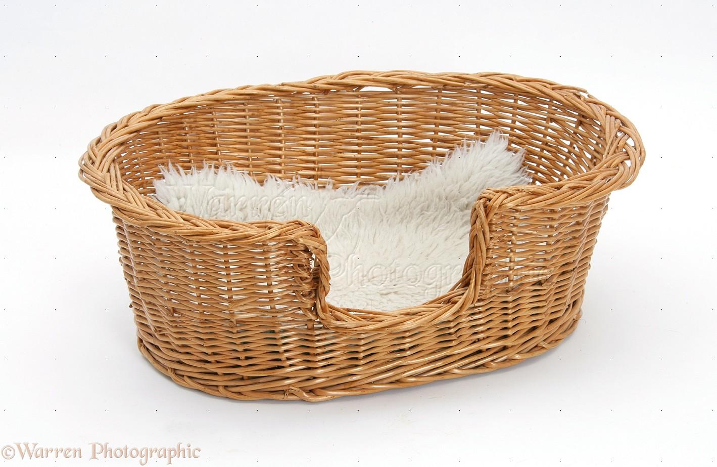 Cat Basket Clipart : Wicker cat basket photo wp