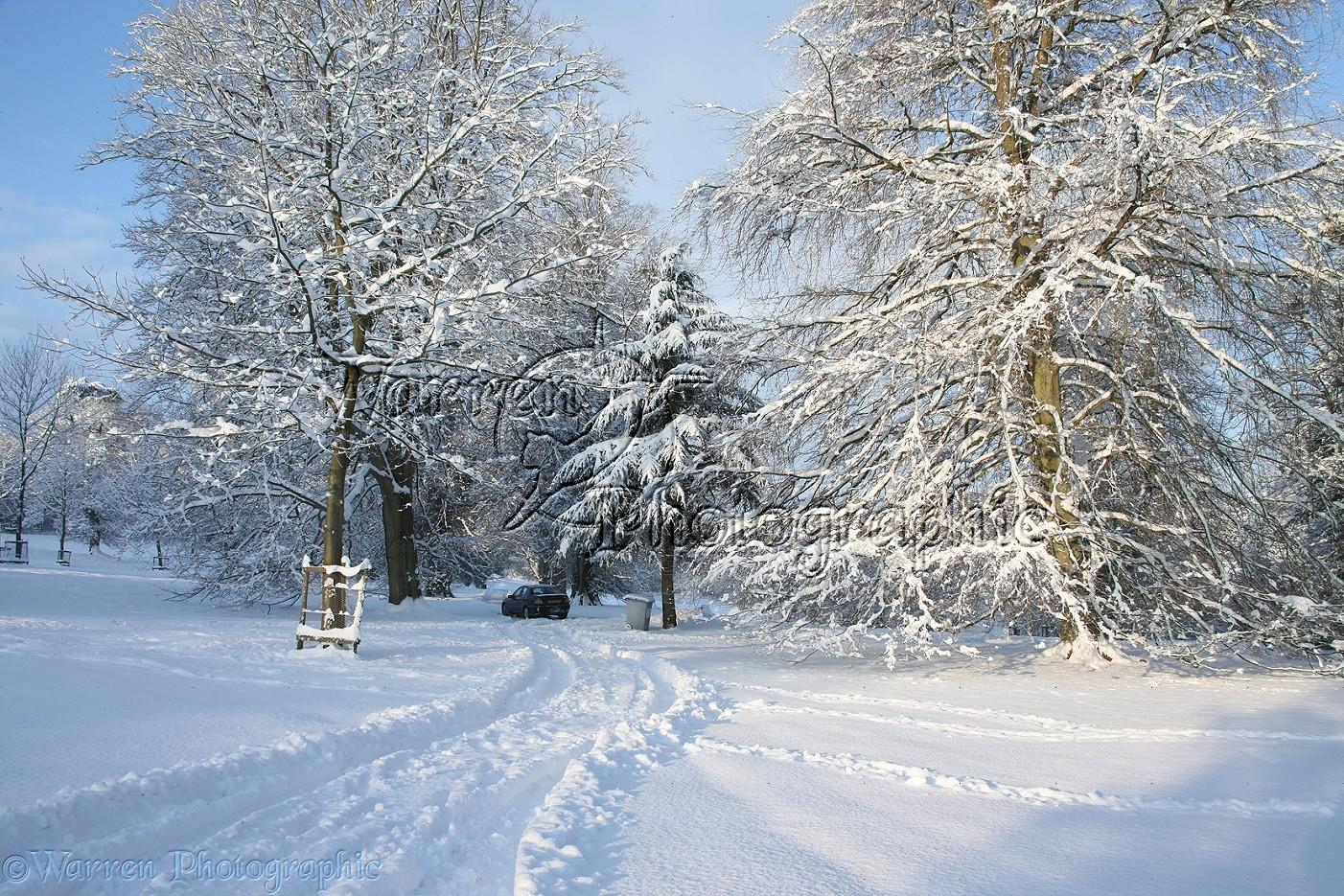 Snow Scene | New Calendar Template Site