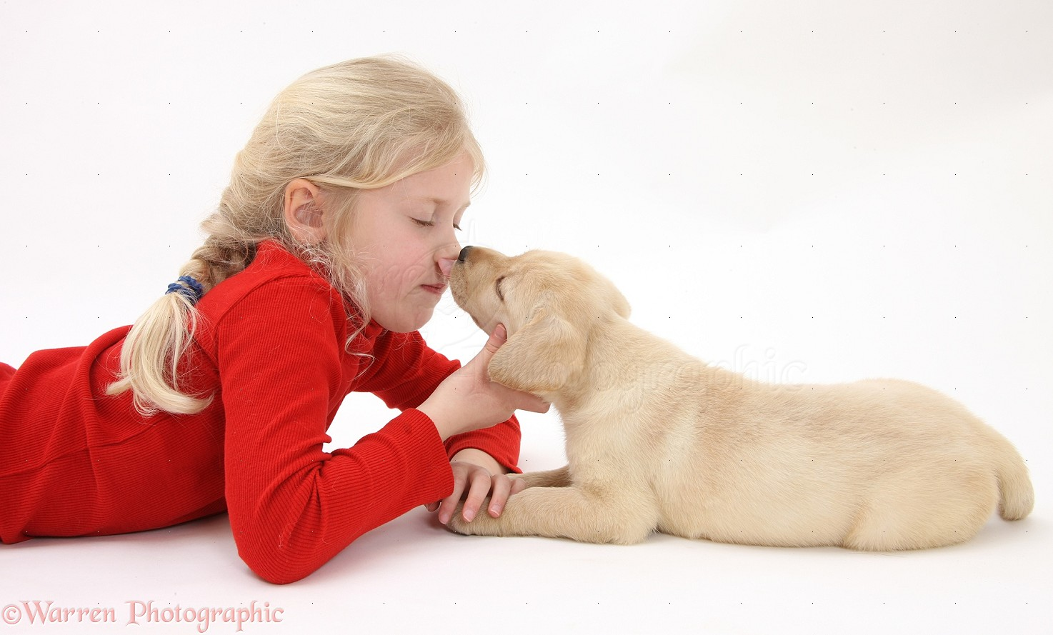 us map for children with 23039 Yellow Labrador Retriever Puppy Licking Child on nikoi likewise 00800 Boy Playing Football With Border Collie also Nutrition2 together with 39739 Girl Playing With Mongrel Dog in addition Fifties.