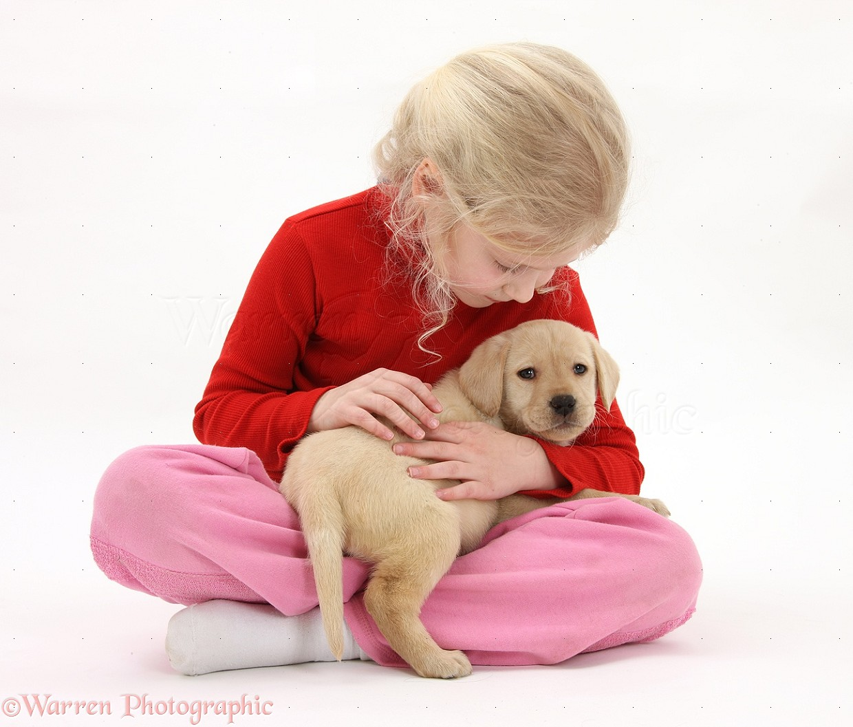 Girl with yellow labrador retriever puppy 7 weeks old