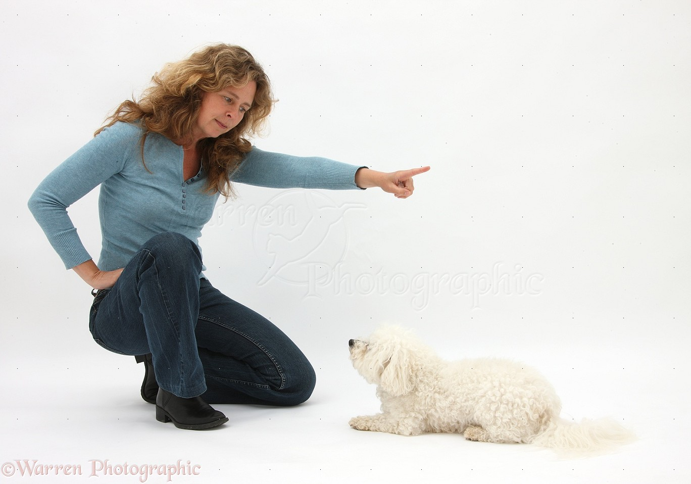 Woman Commanding Bichon Frise Photo Wp32802