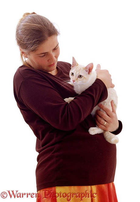 Jane, pregnant and holding a cat, white background