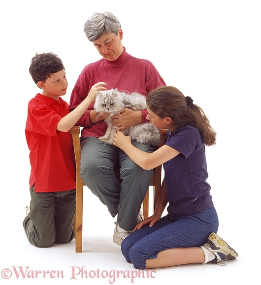 A family loving and stroking an elderly cat, white background