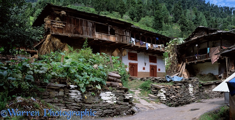Old Manali houses.  India