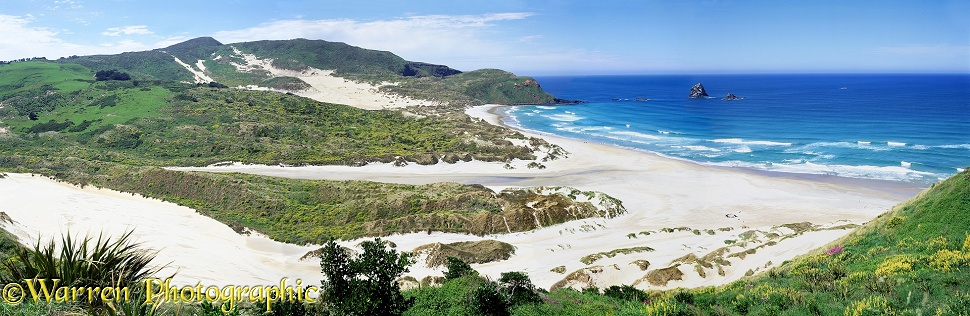 Sandfly Bay panoramic view.  New Zealand