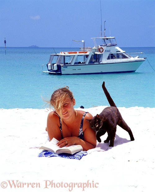 Cat come ashore with tourists on pleasure cruiser