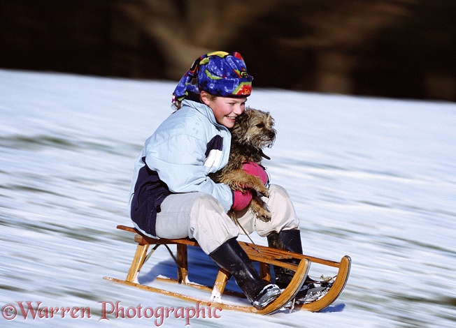 Grace tobogganing with Border Terrier Fidget