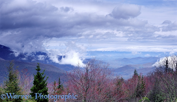 Blue Ridge Mountains with low cloud.  North Carolina, USA