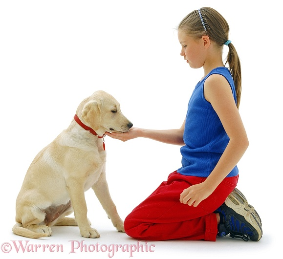 Sian (9) with Labrador x Retriever pup, Bebe, 16 weeks old, not taking treat from her hand, waiting for permission to take it, white background
