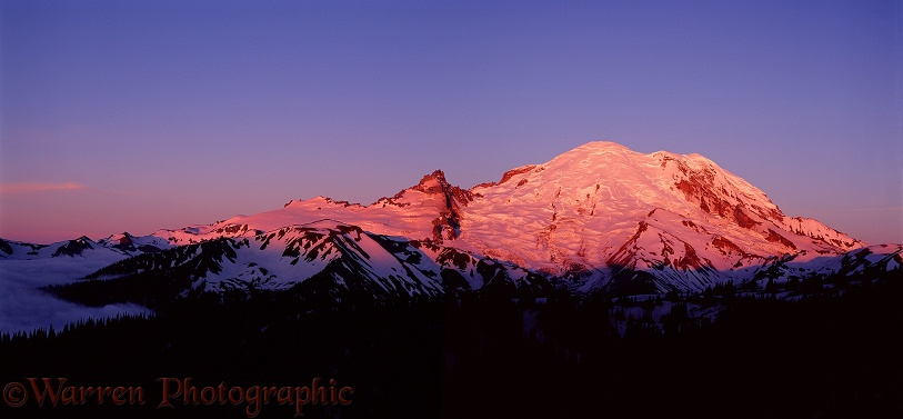 Mt. Rainier at sunrise.  Washington State, USA