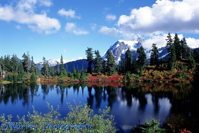 Highwood Lake and Mt. Shuksan - Autumn.  Washington State, USA