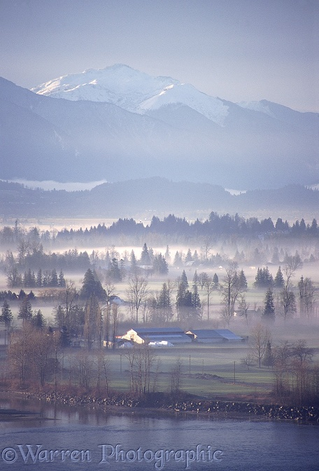 Fraser Valley with mist.  British Columbia, Canada