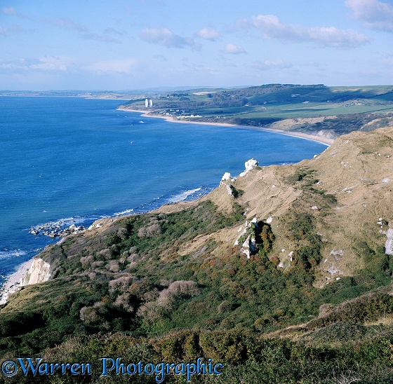 Coastal view with eroded outcrops of hard chalk known as King and Queen Rocks.  Dorset, England