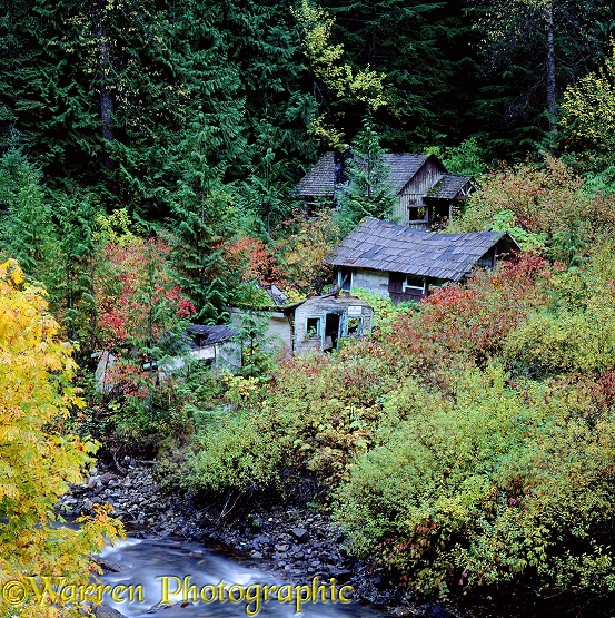 Derelict houses in Manning Park.  British Columbia, Canada