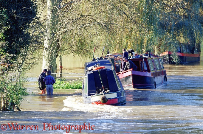 River boat in flood.  Guildford, England