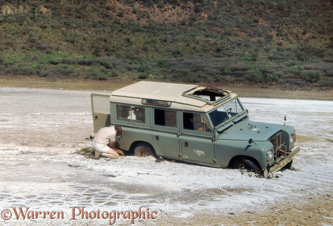 Robert Burton with bogged Land Rover belonging to dutch bird of prey research unit, at north end of Lake Hannington (Bogoria), Kenya.  Kenya