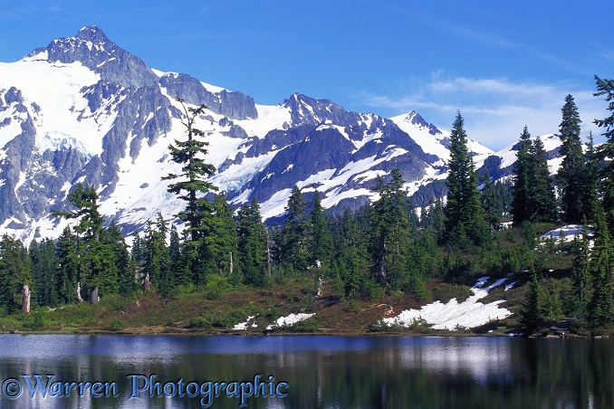 Picture Lake & Mt. Shuksan.  Washington State, USA