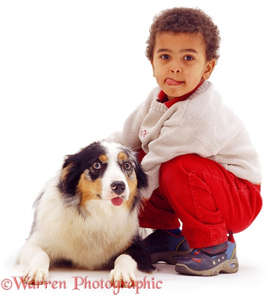 Afro-Caribbean boy, Jumaane, and Border Collie, both with their tongues out, white background