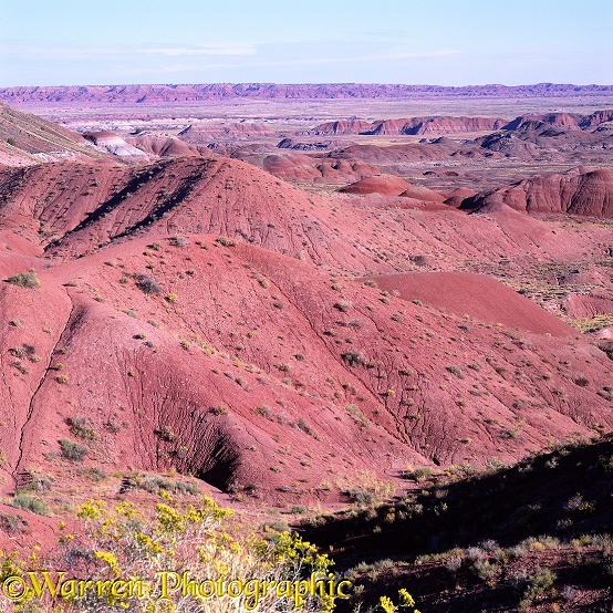Painted Desert scenery.  Petrified Forest National Park, USA