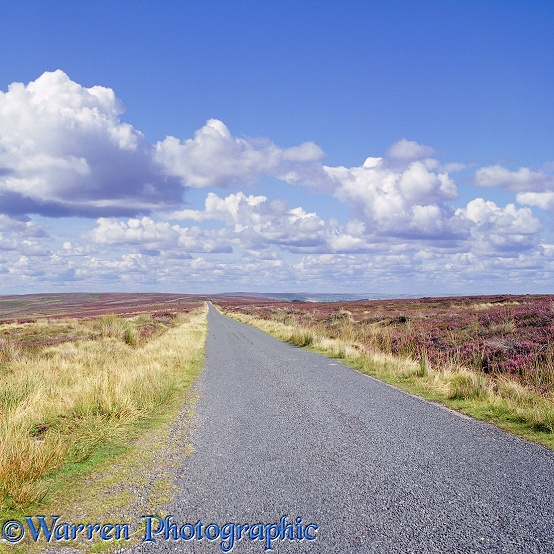 Road on North York Moors.  Yorkshire, England