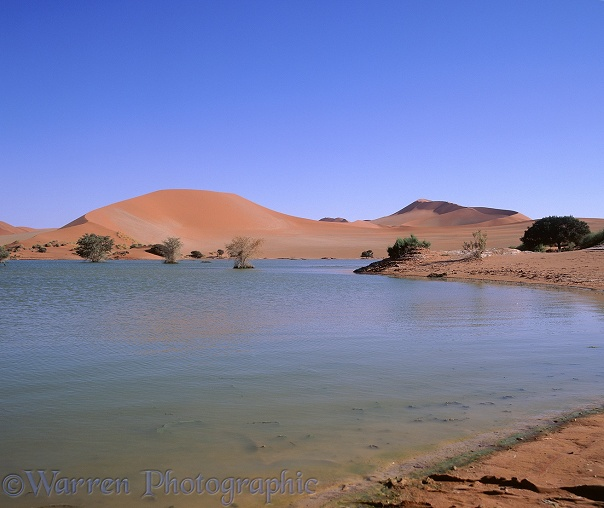 Sossusvlei  in 1997, a year when it was filled with water. Namib Desert