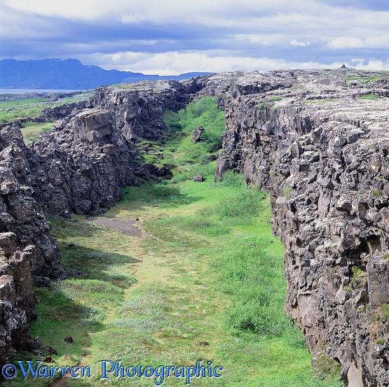 Rock crevasse, created as the North American and Eurasian tectonic plates move apart.  Thingvellir, Iceland