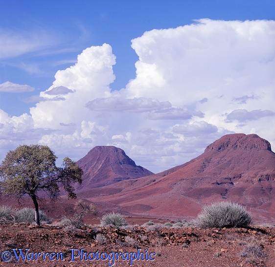 Cumulus over Damaraland