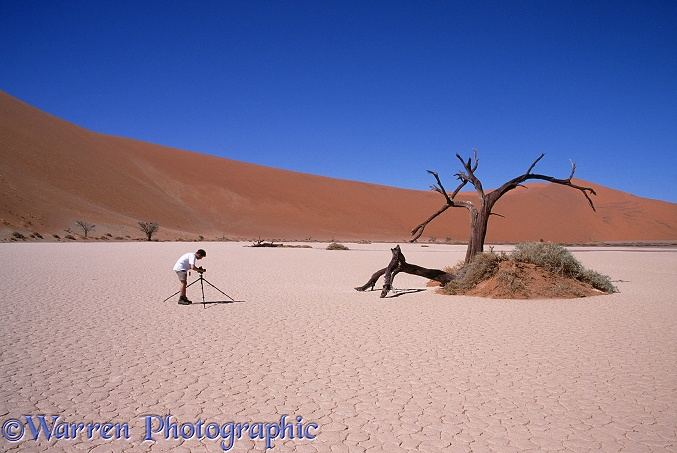 Mark photographing a dead tree in Hidden Vlei.  Namibia