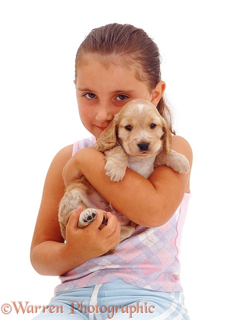 6-year-old Jaye with a Golden Cocker Spaniel puppy, white background