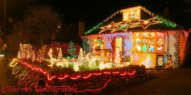 Christmas Lights In Merrow Photo Wp08847