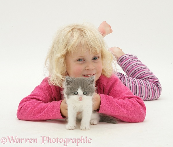 Siena with grey-and-white kitten, white background