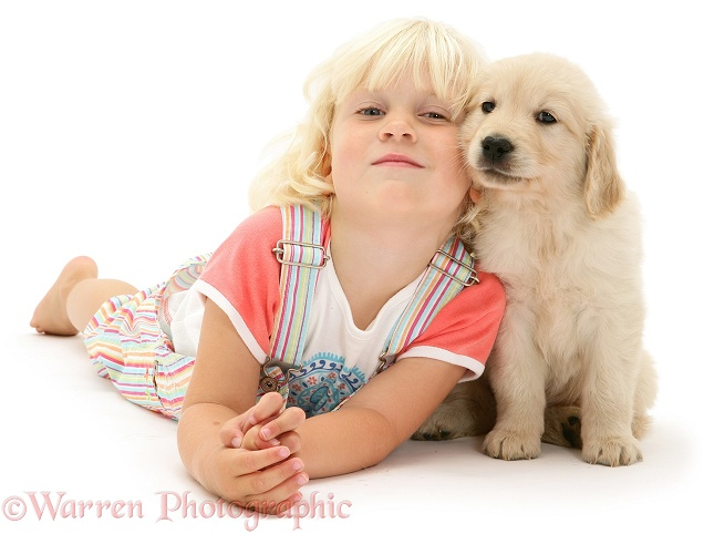 Siena with Golden Retriever pup, white background