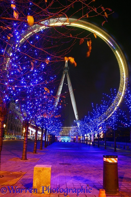 The Millennium Wheel at night.  London, England