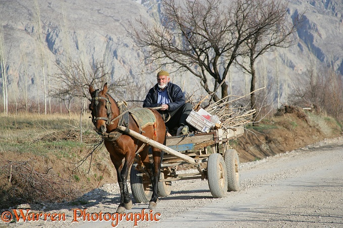 Man with horse and cart.  Aladaglar Park, Turkey