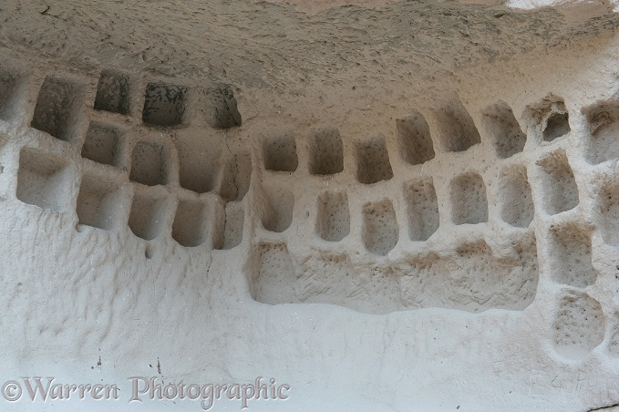 Inside of troglodyte dwelling with compartments for pigeons to live in.  Kapadokia, Turkey