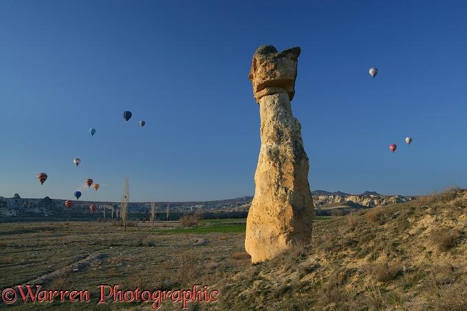 Fairy chimney and hot air balloons.  Kapadokia, Turkey