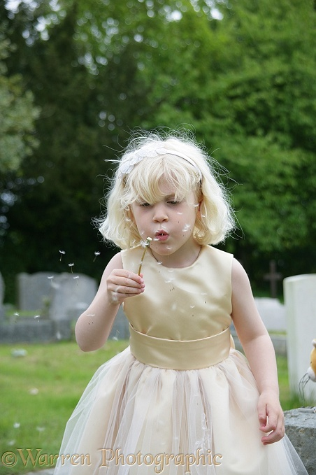 Siena blowing Dandelion seeds