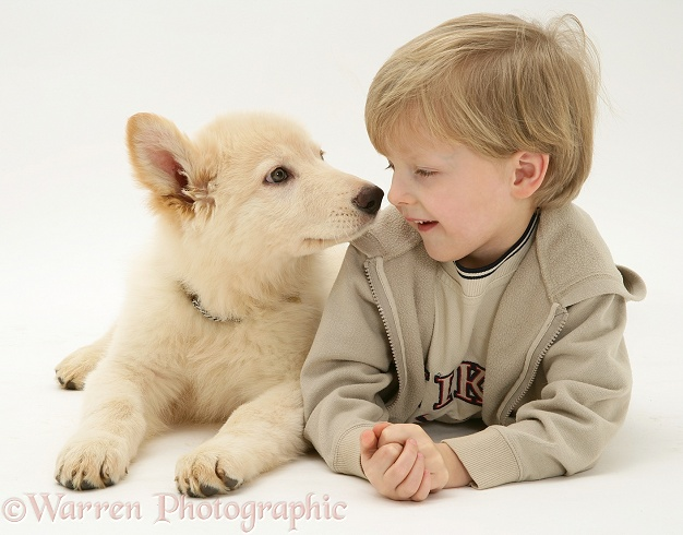 Matthew (6) with his white German Shepherd Dog pup
