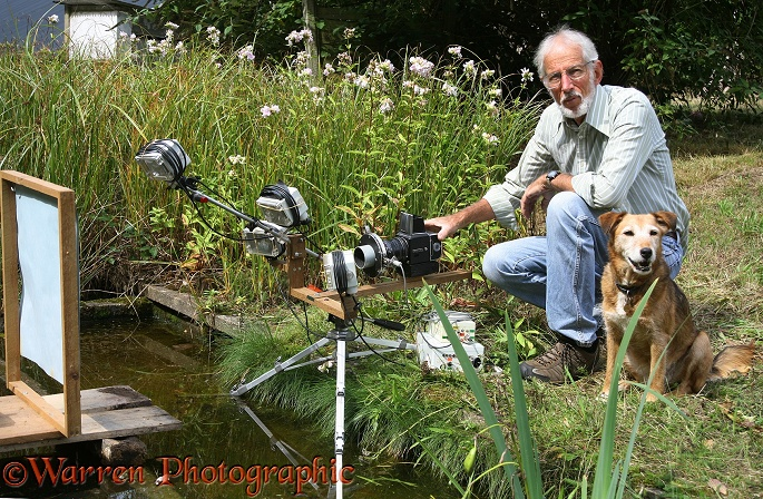 Photographer Kim Taylor, assisted by his dog, Bess, setting up a fully automated system to photograph a dragonfly patrolling over a pond