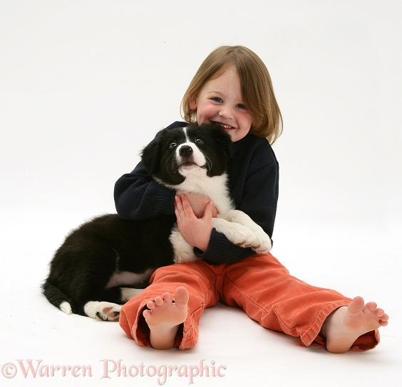 Katie (4) with her black-and-white Border Collie pup Pepper, white background