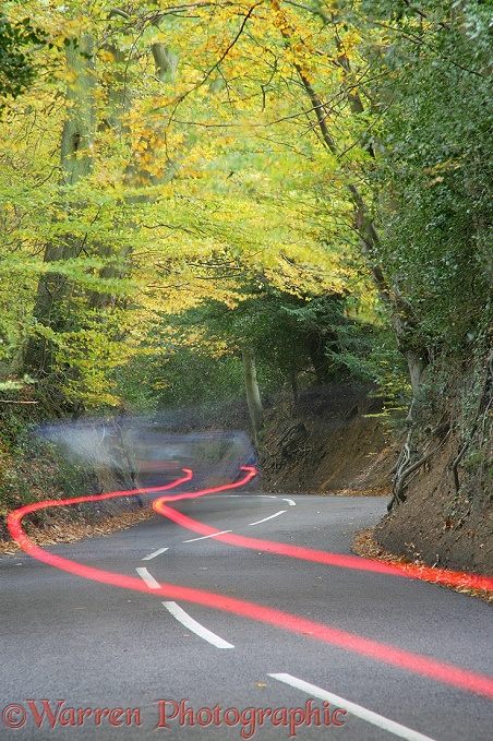 Country lane with autumnal trees and car tail light trails.  Surrey, England